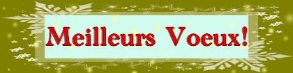 Meilleurs voeux, fêtes, cadeaux, fin d`année, Noël, Nouvel An, Art`n Wood, bijou, artisan, art, sculpture, personnalisé, sur-mesure, collier, pendentif, bracelet, boucles d`oreille, pin`s, charm